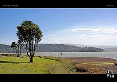 trees sky sun water wind inlet windsurfer nx tomraven... (Photo: tomraven on Flickr)