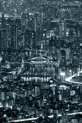 Bridges of Sumida-gawa (), B&W (Dalephonics) Tags: city bridge japan night river lights tokyo rainbow bridges metropolis  sumidagawa tsukishima kachidoki     tokyoskytree
