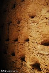 Palomar 45. Villarrn de Campos. 02 (SOSpalomares) Tags: palomar zamora tierradecampos villarrndecampos sospalomares