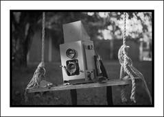Duo on a swing (Eirik0304) Tags: blackandwhite bw slr film norway norge kodak duo hc110 135 exa tessar 50f28 dilutionh era100 classicblackwhite classicblackandwhite ©edrussellroberts bwfp