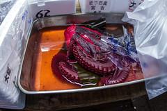 Dyed Octopus (James Simison) Tags: sea fish japan japanese tokyo market sale octopus aquatic tentacle sucker tsukijifishmarket mollusc cephalopod suctioncup canon7d