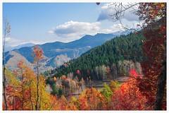avat (zbay IIK FOTORAFILIK) Tags: autumn turkey trkiye artvin manzara landspace pentaxkx sonbahar gz avat