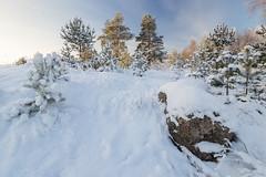 IMG_9732 (aneshitoff) Tags: travel winter snow russia
