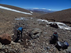 Water collecting at 5100m on Pissis