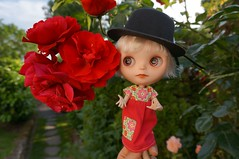 Blythe a Day 11 February 2014 - Roses