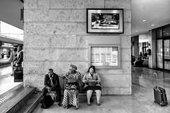 Stazione di Padova - L'attesa (carlo tardani) Tags: blackandwhite bw stazione bianconero padova valige passeggeri blackwhitephotos viaggiatori lattesa nikond3 stazionedipadova mygearandme mygearandmepremium mygearandmebronze mygearandmesilver mygearandmegold flickrstruereflection1 infinitexposure
