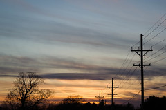silhouettes (jojoannabanana) Tags: trees sunset colors lines silhouette clouds driveby powerlines wires dreamy warmcolors