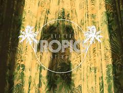 Tropics (| LAZARUS |) Tags: light shirtless portrait man male window tattoo self model body rear heat tropical curtains tropics intimacy