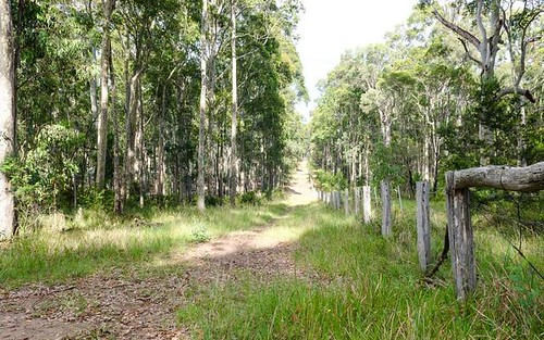 Lot 29 Collett Place, Meringo NSW 2537