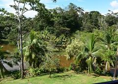 A sunny day (anacm.silva) Tags: lowlands bocatapada lagunadellagarto costarica nature natureza naturaleza centralamerica