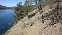 Hawn's Overlook Barren 1 (Pete&NoeWoods) Tags: f16sch02 huntingdoncounty hawnsoverlookbarren shalebarren