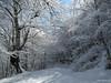 IMG_1520 (BiciNatura) Tags: bicinatura mountain bike mtb monte aspra all snow
