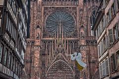 Cathédrale Notre-Dame de Strasbourg (lncgriffin) Tags: strasbourg strossburi france républiquefrançaise europe europa cathedralenotredamedestrasbourg ruemerciere strasbourgcathedral cathedralofourladyofstrasbourg rosewindow architecture christmas halftimber travel nikon d750 zeiss milvus distagon milvus5014zf hdr