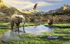 Carlos Atelier2 - Paraiso (Carlos Atelier2) Tags: carlos atelier2 paraíso leão elefante águia lago montanhas