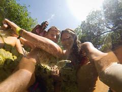 Tulum Cenote Azul-2