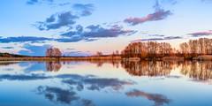 Coming Late (Peter Vestin) Tags: nikondf voigtländernokton5814slii siruin3204x siruik30x adobecreativecloudphotography topazlabscompletecollection herrön skattkärr karlstad värmland sweden nature landscape seascape sunset panorama