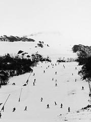 The Slopes (Kaptain Kobold) Tags: kaptainkobold ski slopes snow winter skiing thredbo nsw australia bw blackandwhite people scenery