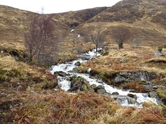 8599 Tumbling waters in Glen Quoich (Andy - Busyyyyyyyyy) Tags: 20170319 bbb burn glenquoich scotland sss stream water www