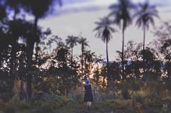 Forward (Noe Britez) Tags: forward avanzar nature naturaleza selfportrait self selfie myself memyselfandi autorretrato autoretrato nikon coconut cocotero