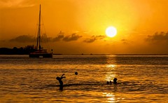 Joy only in Miami Fl. ☺ ©® (The city guy ☺) Tags: oceanreef beach sunset gold joy seashore seascape playing miamifl beachscape miamibeaches outdoors travelling tourism sailboat people
