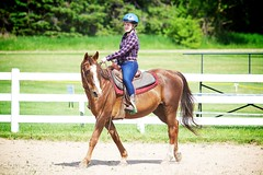 Horse Show (JustJamieLeigh) Tags: horse horses horseshow show horsebackriding horseback riding girl girls cowgirl equestrian equines equine western westernriding westernpleasure
