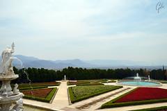 JARDINES DE MEXICO (fco_galan34) Tags: jardines mexico naturaleza natural morelos paisajismo ecosistemas flores colores plantas arboles italia