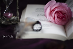 Proyecto 117/65 (Art.Mary) Tags: lupa magnifyingglass loupe libro book livre rosa rose poesía poetry poésie canon bodegón stilllife naturemorte proyecto365 glass verre cristal crystal