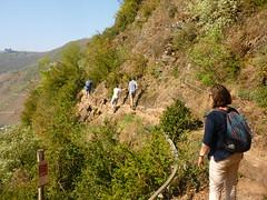 Kletterpassage (Jörg Paul Kaspari) Tags: eller bremm mosel diecalmonttour frühling spring wanderung wandertour klettersteig calmont kletterpassage