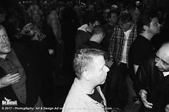 2017 Bosuil-Het publiek bij Purpendicular 8-ZW