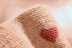 Textile - Macro Mondays (Andrea Ha) Tags: macromondays clothtextile macro closeup tamron nikon d5300
