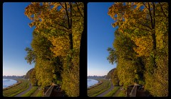 Lingnerpark an der Elbe 3-D / Stereoscopy / CrossView / HDR / Raw (Stereotron) Tags: saxony sachsen dresden elbflorenz lingnerpark schloss eckberg elbe ufer herbst autumn indiansummer vibrant colors nature landscape europe germany crosseye crosseyed crossview xview cross eye pair freeview sidebyside sbs kreuzblick 3d 3dphoto 3dstereo 3rddimension spatial stereo stereo3d stereophoto stereophotography stereoscopic stereoscopy stereotron threedimensional stereoview stereophotomaker stereophotograph 3dpicture 3dglasses 3dimage twin canon eos 550d yongnuo radio transmitter remote control synchron kitlens 1855mm tonemapping hdr hdri raw