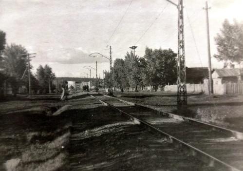 DSC00616 ©  eadodonova