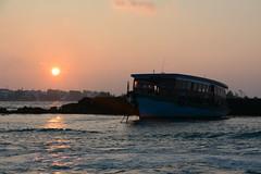 Male' / މާލެ (Maldives) - Airport boat (Danielzolli) Tags: މާލެ male maldives malediven dhivehi maldive maldivas maldivi мальдивы stolica hauptstadt capital capitala астана astana capitale hovedby maleatoll dhoni schiff ship bateau boat batello statek okret lod корабл wreck wrack
