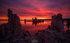 Mono Blaze (Björn Burton Photography) Tags: tufa towers monolake sunrise burn reflection colors landscape california easternsierras bjornburtonphotography