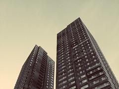 Rotterdam Heights. (stefanleegoodwin) Tags: rotterdam netherlands holland skyscraper sepia outdoors windows sky justgoneawander just gone wander stefan goodwin lee