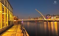 Samuel Beckett Bridge I Dublin (Frederick Bancale) Tags: fightingirish greenarmy emeraldisle harpshape cablebridge santiagocalatrava ireland dublin samuelbeckettbridge liffeyriver