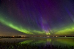 Amazing colours April 21 (John Andersen (JPAndersen images)) Tags: alberta aurora beiseker clouds granaries green night pink pond purple reeds reflections sky stars