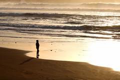 safety first (Wackelaugen) Tags: silhouette woman girl refelction sea ocean atlantic sunset gold laspalmas grancanaria spain europe canaries canaryislands canaryisles canon eos photo photography wackelaugen
