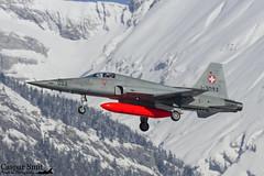 Swiss Air Force F-5E Tiger II (Caspar Smit) Tags: northrop f5 tiger j3093 swiss sion lsgs wef wef17 aircraft fighter jet aviation airforce fliegerstaffel luftwaffe airplane nikon d7000