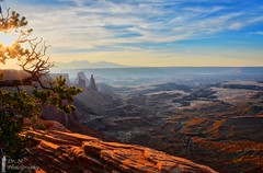 Island in the Sky view of Canyonlands NP (Dr. M.) Tags: canyonlandsnationalpark sunrise sun light clouds sunstar tree vivid colorful canyons valleys nikon d7000 travel hike arch landscape scenery orange sky green 500px utah