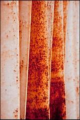 20090909-015 (sulamith.sallmann) Tags: abstract abstrakt background backgrounds form formen forms geometrie geometrisch geometry hintergrund hintergründe metal metall metallisch muster oberfläche pattern rost rostig rust rusty shape shapes structure struktur surfaces textur texture texturen wallpaper berlin deutschland deu sulamithsallmann