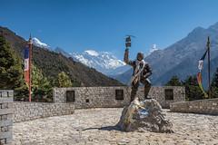Mt. Everest lookout (troyhulm) Tags: nepal everest trek lookout