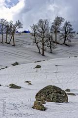 Snow 14 ... (Bijanfotografy) Tags: nikon nikond800 nikon180mm28afd india jk jammukashmir kashmir sonamarg snow mountainside landscape
