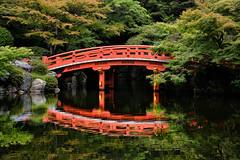 Red Reflection (DILLEmma Photography) Tags: bridge kyoto japan nature water curve rocks idyllic trees