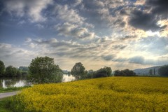 Dehme Countryside in May 2 (blavandmaster) Tags: park bridge trees sky sun colour reflection tree green art nature water beautiful grass yellow clouds buildings reflections river germany season landscape deutschland licht soleil countryside gut spring eau colours seasons cloudy awesome horizon natur may meadow himmel wolken sunny rivire ciel arbres owl land handheld nrw weser chateau nuages landschaft sonne bume allemagne parc hdr rapeseed westfalen ostwestfalen weserrenaissance wasserschloss contryside lhne photomatix 2013 ulenburg obernbeck dehme