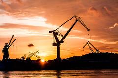 Its those cranes again! (Sina Farhat) Tags: light sunset red orange silhouette canon göteborg harbor raw sweden bokeh cranes sverige cocktailhour solnedgång 031 röd ljus hamn gothenborg 50d skärpedjup kranar canon50mm14usm lightroom4