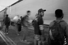 (medialunna) Tags: méxico tren migración pobreza centroamérica migrantes labestia