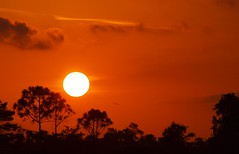Red Sky Sunset (tclaud2002) Tags: sunset red sky sun florida horizon glows martincounty joneshungryland
