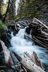 Sundance Canyon Falls (jloden) Tags: canada rockies canadianrockies canada2013