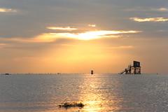 Rays (Thunderbolt_TW) Tags: sunset sea sky sun reflection water windmill canon landscape taiwan     windturbine  changhua       hsienhsi   changpingindustryarea